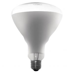 AE307 Apuro Shatterproof Heat Lamp ES- 250watt for DL492-3 DR757 DR758 DR759 DY460-462