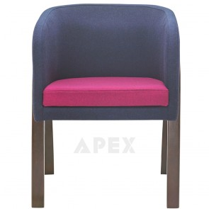Charaziak Two Color Arm Chair B-0810