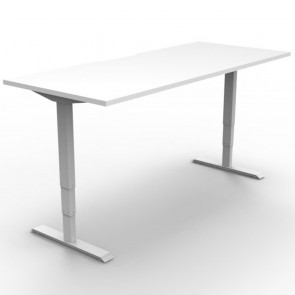 Electric Height Adjustable Standing Desk White White