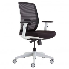 Iris Fully Ergonomic Office Chair